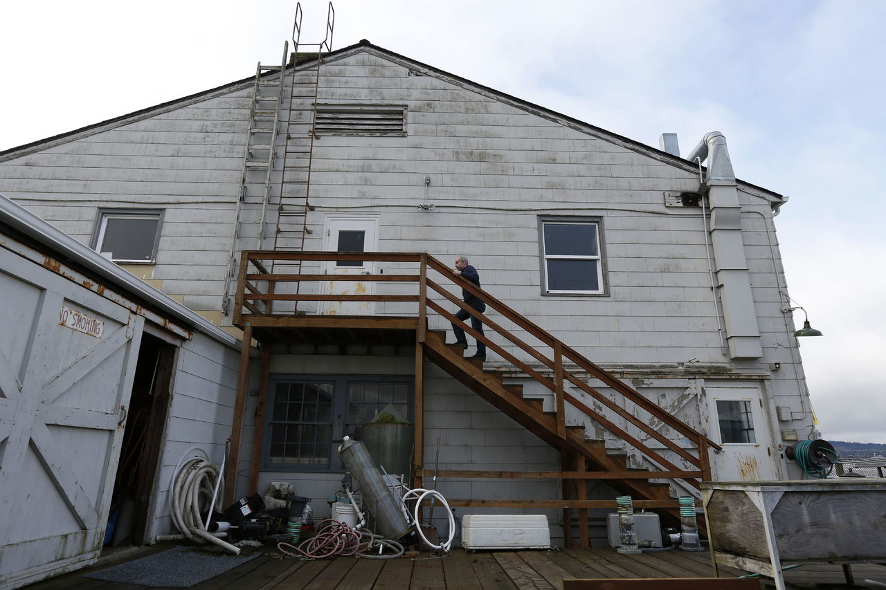 Research ecologist Paul McElhaney walks up stairs at the Northwest Fisheries Science Center building in Mukilteo on Feb. 16.