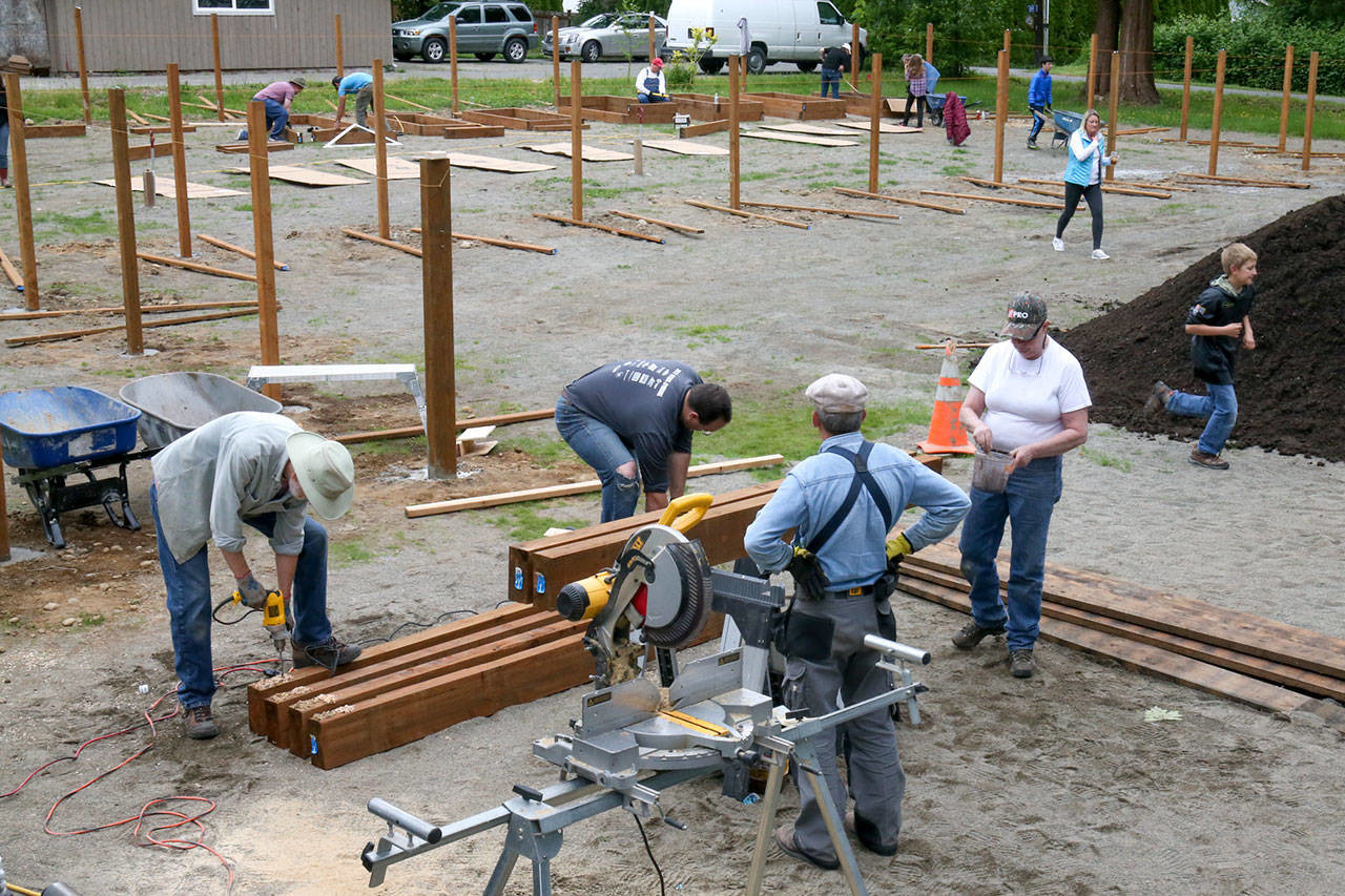 Volunteers work to create the largest community garden in Snohomish County. (Kevin Clark / The Herald)