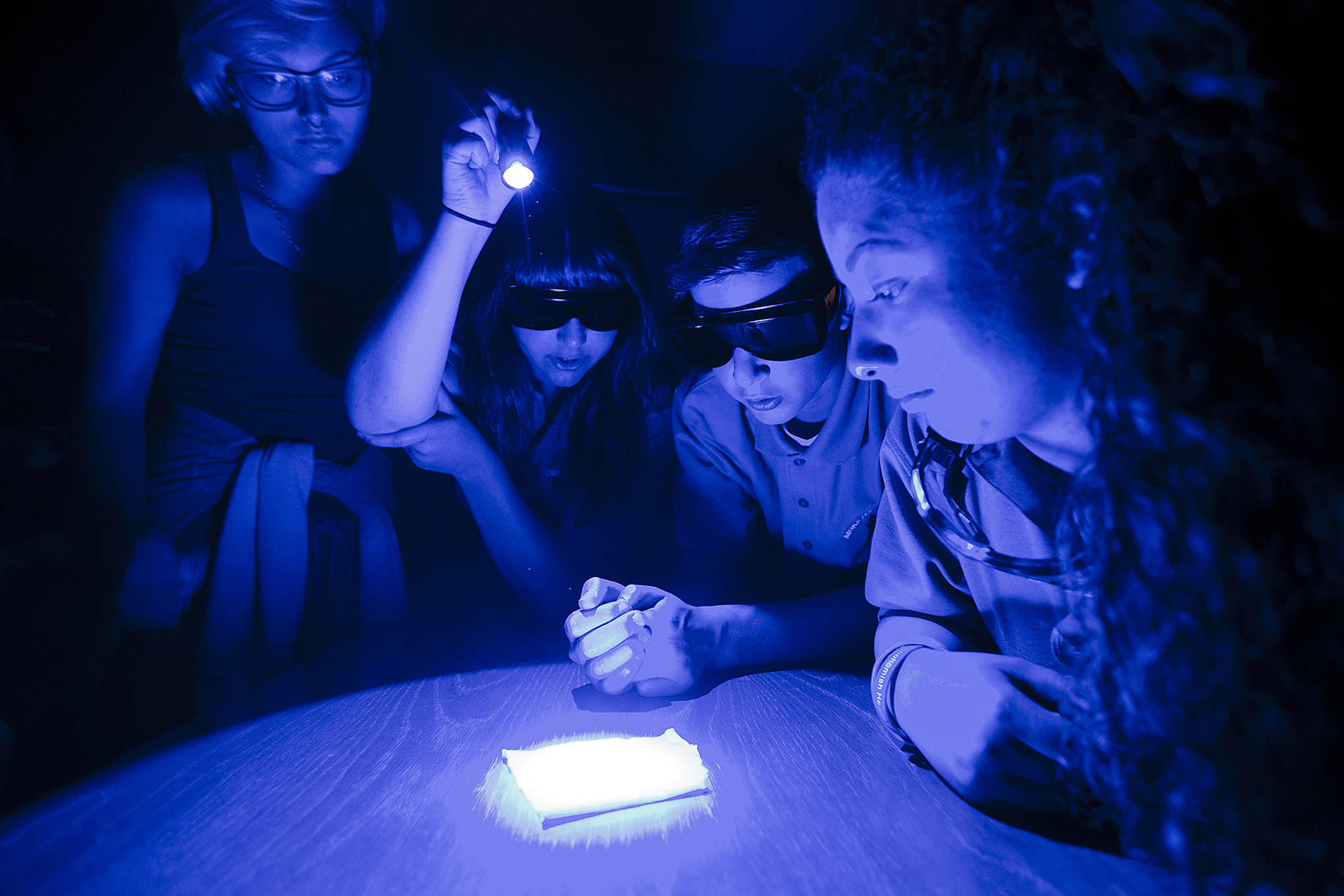 Mukilteo Youth Police Academy students (from left) Makena Porter, Abygahle Stumpf, Alex Baltrukovicz and Colleen Alvarez use a UV light to look for hair samples in a piece of carpet during a class on forensics at Kamiak High School on Thursday. (Ian Terry / The Herald)