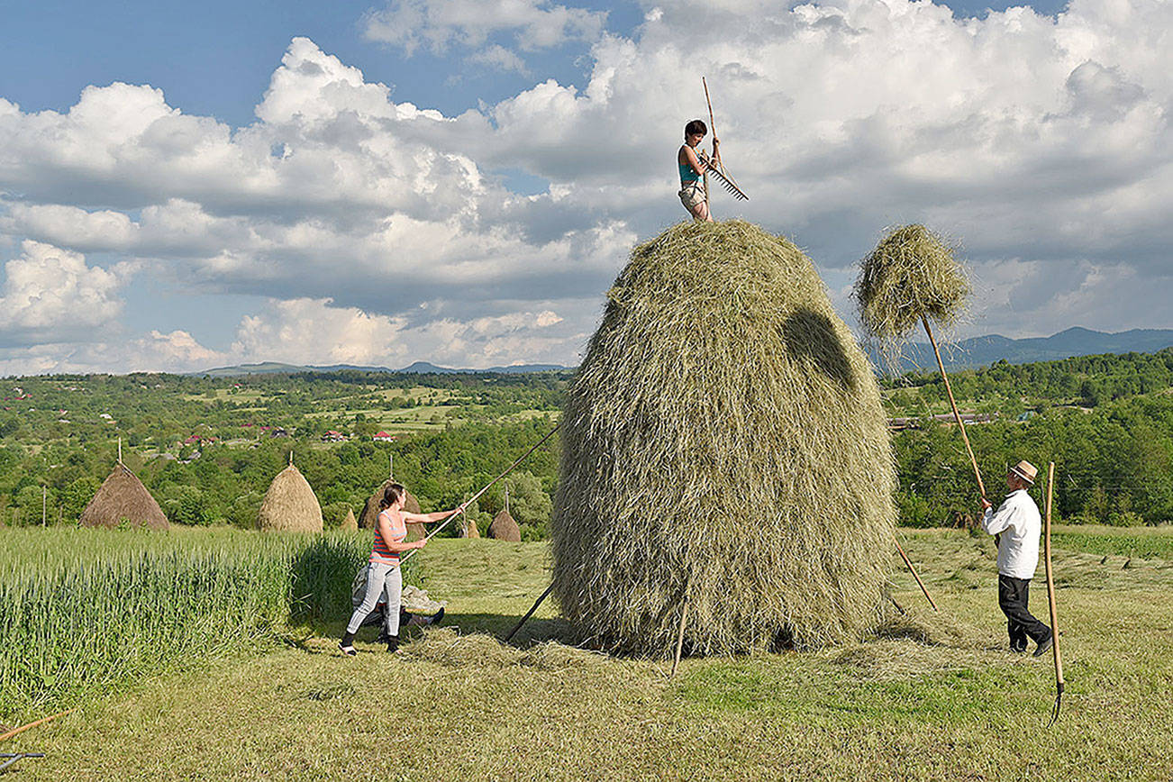 Romania's countryside: The land that time forgot