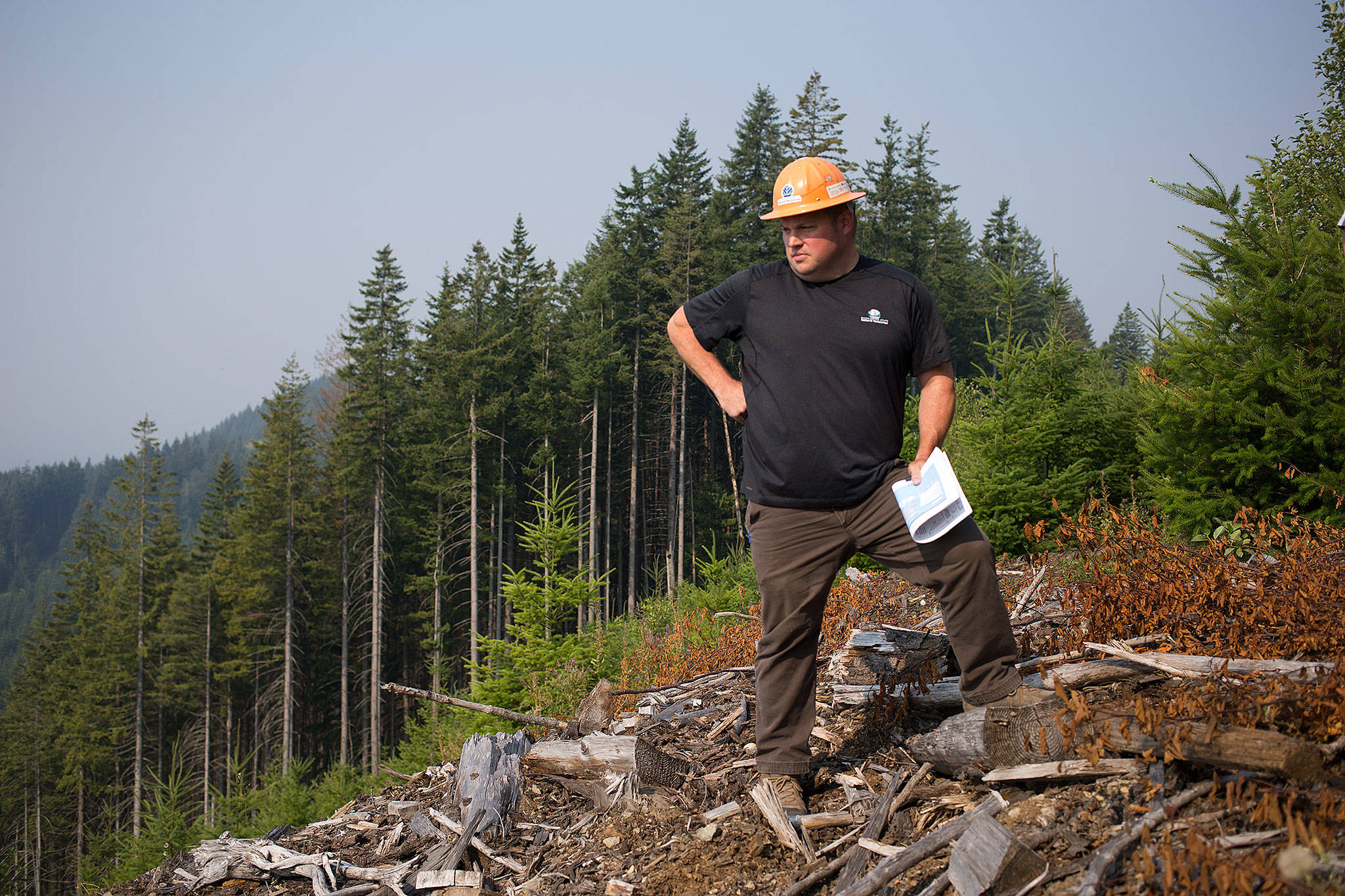 Mark Arneson, a Department of Natural Resources district manager, looks down Stimson Hill, near Arlington, where the Grandview Unit 1 timber sale was logged in 2009 and replanted a year later. (Andy Bronson / The Herald)
