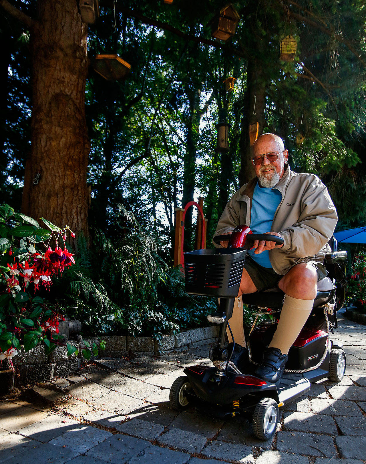 Jim Mathis was able to get around his garden paths Aug. 22 on his battery-powered transport. (Dan Bates / The Herald)