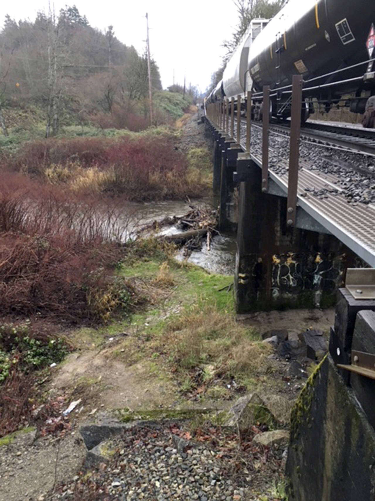 A dive team was called Tuesday morning to recover a body after a train vs. pedestrian accident in Monroe. The accident occurred shortly after 6 a.m. (Photo courtesy of Monroe Police Department)