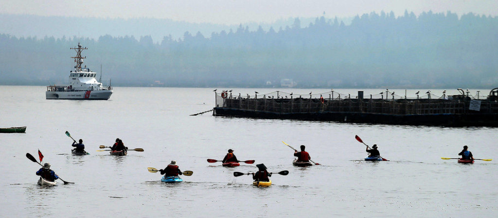 To protest salmon farming, kayakers paddle out to fish pens in Rich Passage near Bainbridge Island last September, after last summer's release of up to 260,000 non-native salmon near Cypress Island. (Larry Steagall / Kitsap Sun)