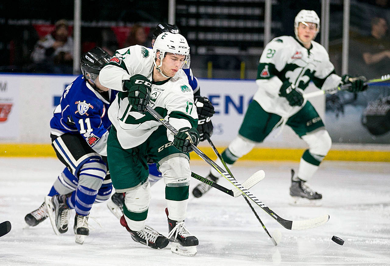 The Silvertips' Matt Fonteyne (center) controls the puck with Victoria's Matthew Phillips giving chase during a game Jan. 7, 2018, at Angel of The Winds Arena in Everett. (Kevin Clark / The Herald)