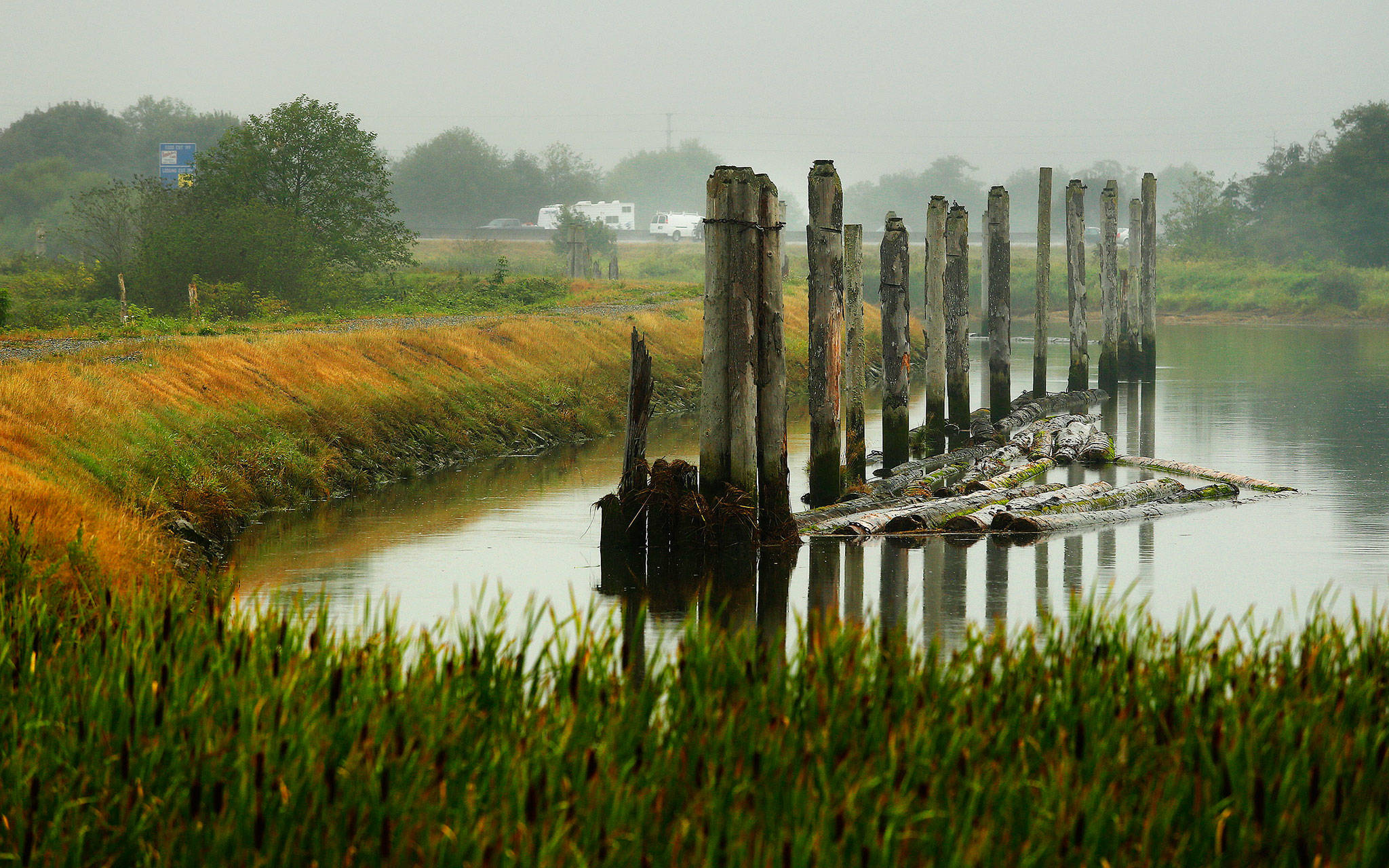 This is how the banks of Union Slough on Smith Island looked in 2014. (Mark Mulligan / Herald file)