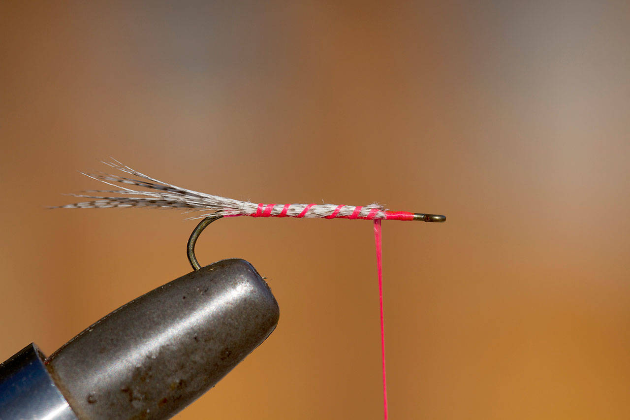 Secure about a dozen mallard fibers for tail. (Mike Benbow photo)