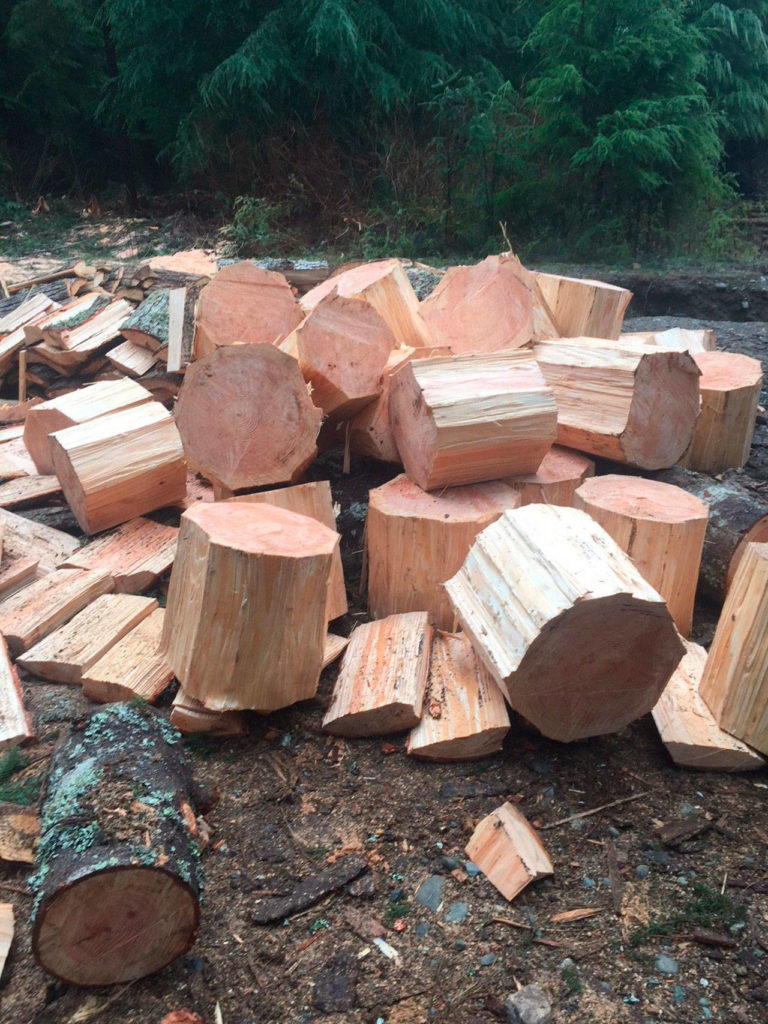 A man reportedly told a Washington State Department of Natural Resources officer that he thought his Discover Pass let him chop down firewood. It doesn't. (Washington State Department of Natural Resources)