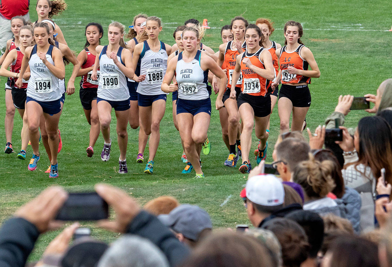 Glacier Peak's Brooke Wallace (1894), Samantha Boyle (1890), Lindsay Ardry (1889), Alexis Palmer (1892) and Aviry Stratton (in background) compete in the 4A girls state cross country championship meet on Nov. 3, 2018, at Sun Willows Golf Course in Pasco. Glacier Peak won the 4A state team title. (TJ Mullinax / For The Herald)