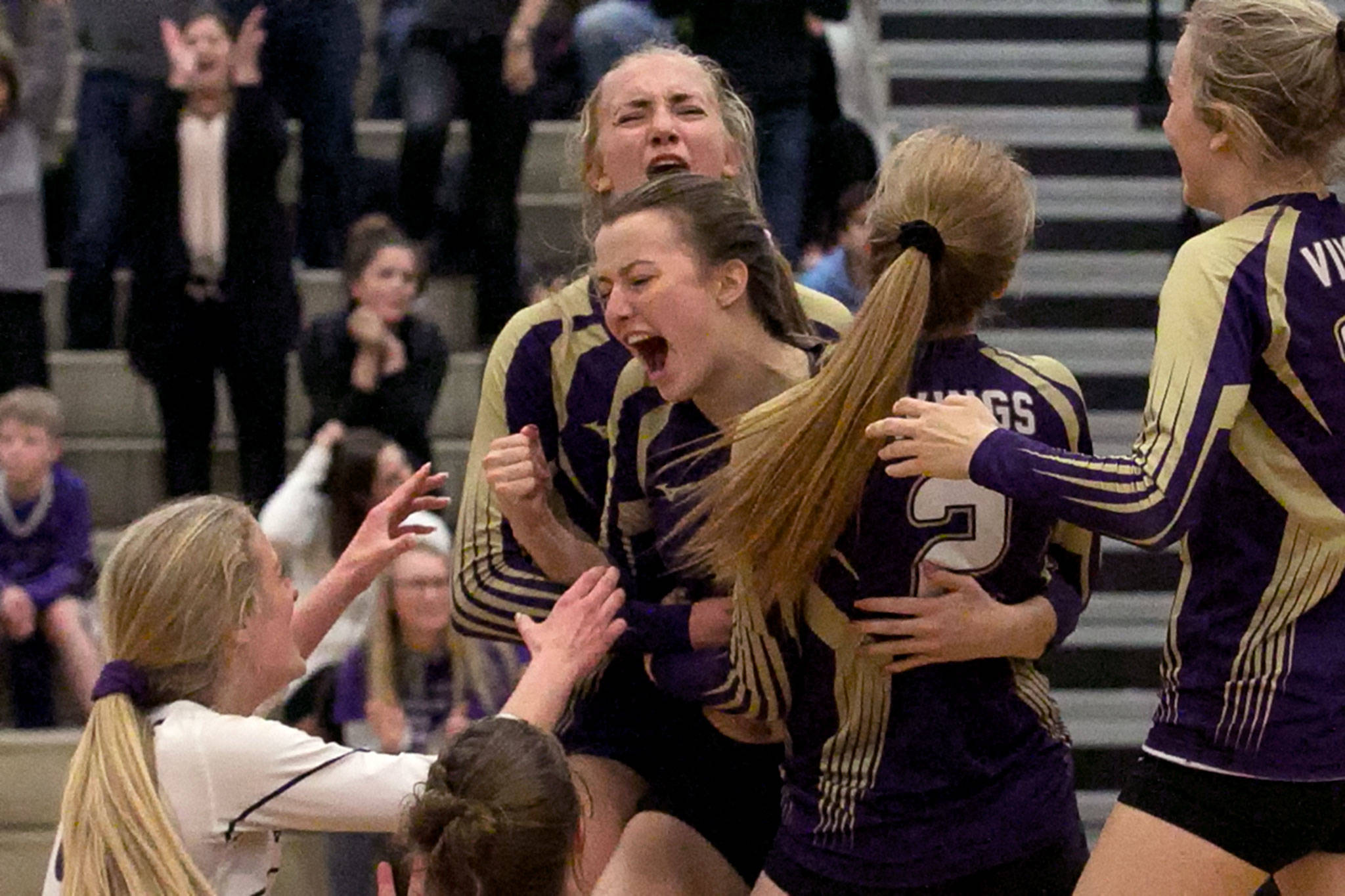 Lake Stevens players celebrate their 21-19 win in the fifth set against Issaquah during the Wes-King 4A District Tournament on Nov. 6, 2018, at Bothell High School. (Kevin Clark / The Herald)