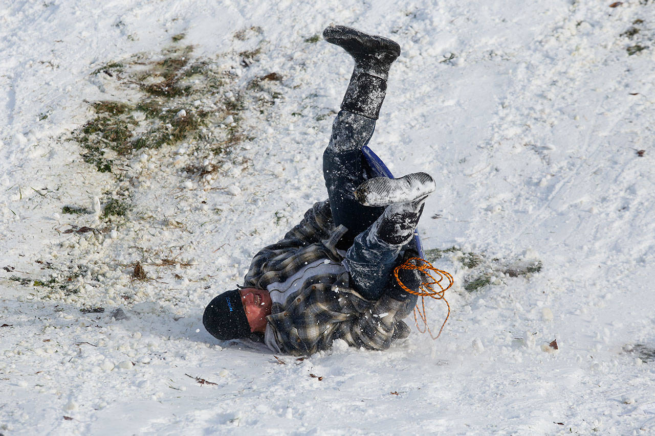 Kevin Swanson, of Arlington, bites the snows while sledding with his daughter Monday, Feb. 4, at Jennings Park in Marysville. (Andy Bronson / The Herald)