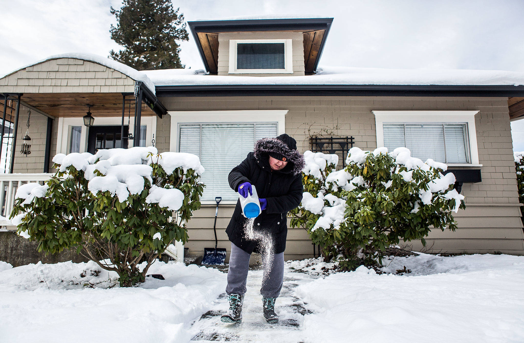 "Kathy Culver salts the walkway to her home Sunday in Everett. ""Not sure how much good it will do with the new snow coming,"" she said. (Olivia Vanni / The Herald)"