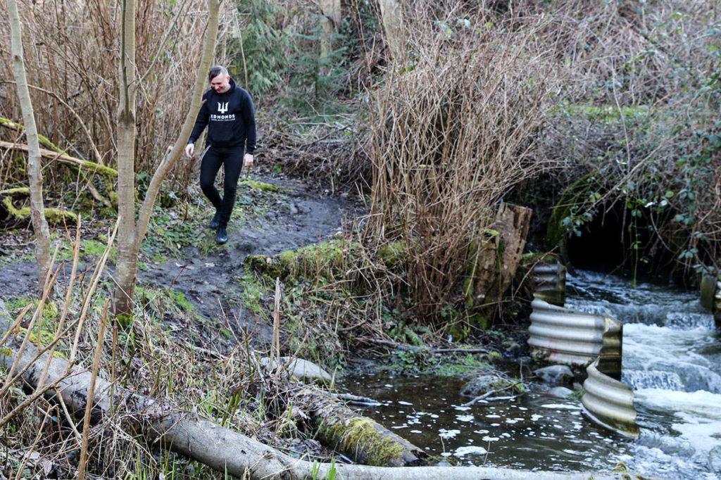 Lazarus Hart was named a state scholar representing Edmonds Community College for studies on campus and work in surveying Japanese Gulch in Mukilteo. (Kevin Clark / The Herald)