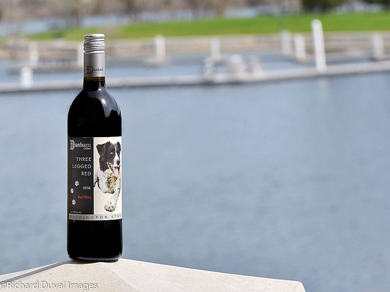 J.D. Nolan, who owns Fat Olives Restaurant in Richland, worked with the Mercer family to create the Schooler Nolan 2016 Cabernet Sauvignon from the Horse Heaven Hills. The $15 Cab was voted by judges as best of class at the 2019 Cascadia International Wine Competition. (Richard Duval Images)