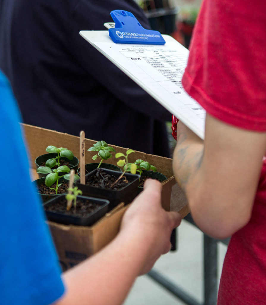 Students use clipboards to do orders at the plant sale. (Olivia Vanni / The Herald)