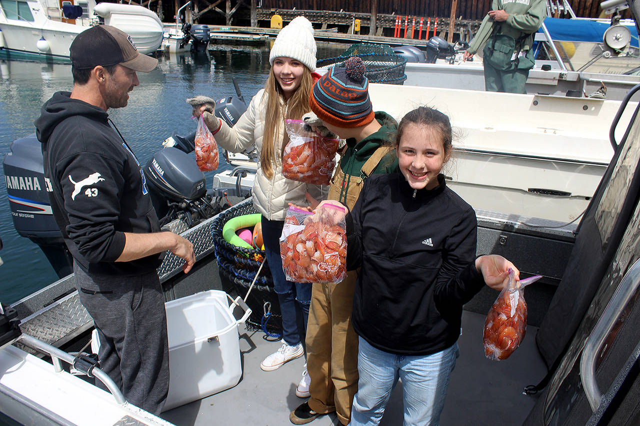 With limited days to catch spot shrimp, students sometimes skip school and adults play hooky from work, which is exactly what the Keyser family from Everett did Wednesday. Here, they show off the rewards of a successful spot shrimp expedition while docked at the Langley marina. (Patricia Guthrie / Whidbey News Group)