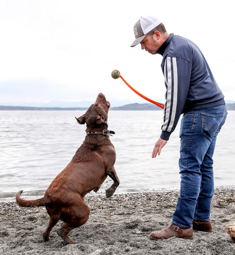 Olive reacts to the ball being held by John Morgan at Point Edwards Park in Edmonds on April 4. (Kevin Clark / The Herald)