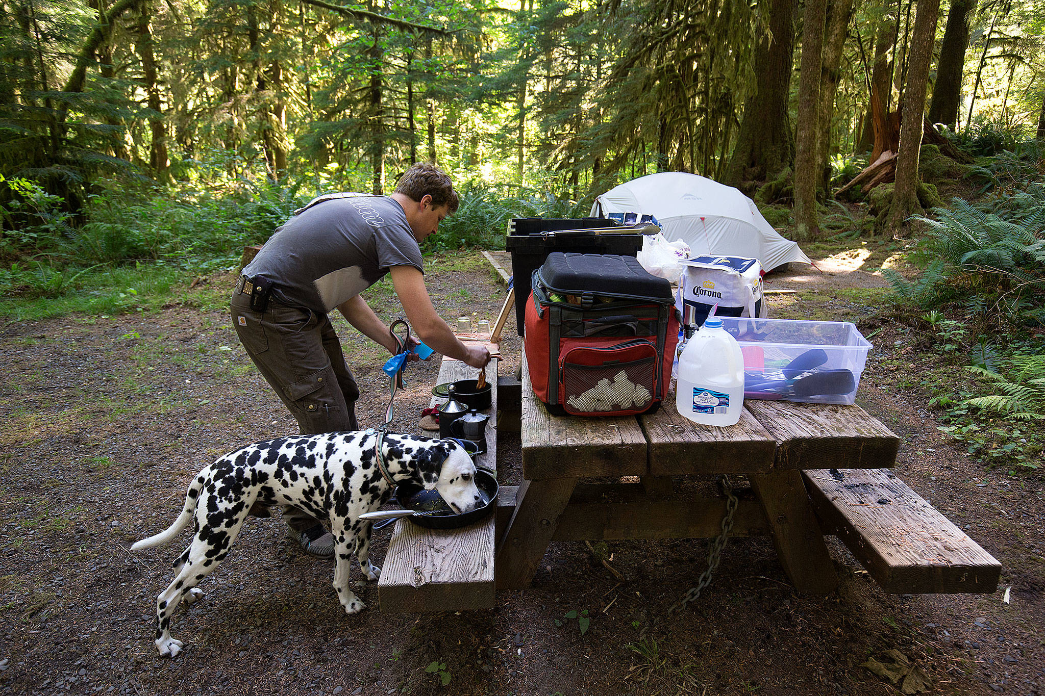 "Drew Bakgaard cleans up after breakfast while his dog Luka licks a skillet — which Bakgaard calls ""the pre-rinse cycle"" — while camping at Gold Basin Campground on Friday. (Andy Bronson / The Herald)"