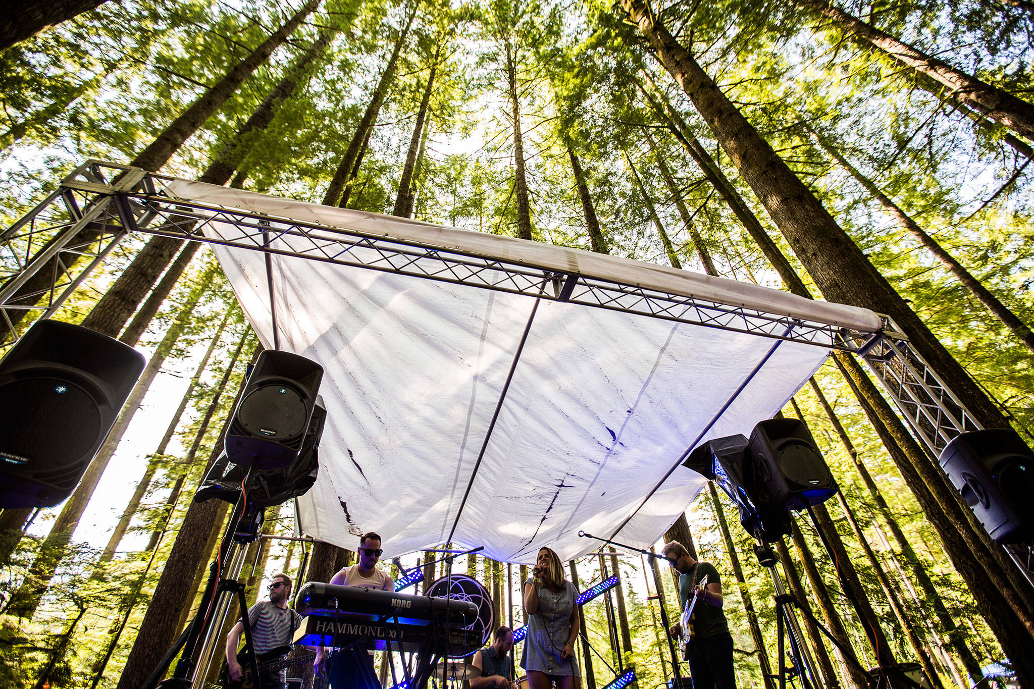 Everett band the Tellers perform at the Forest Stage during the third day of Summer Meltdown on Saturday, Aug. 3, 2019 in Darrington, Wash. (Olivia Vanni / The Herald)