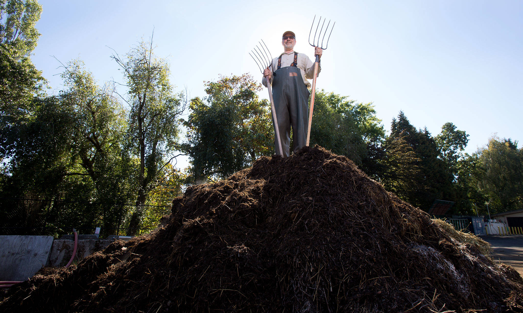 "A steaming pile of poo compost, from non-primate herbivores, is the ""end result"" at the Woodland Park Zoo, which calls the finished compost Zoo Doo. It is sold to customers in bulk through a lottery system. (Andy Bronson / The Herald)"