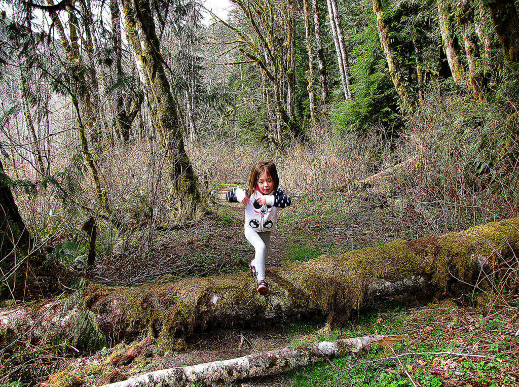 Hazel Loerch leaps off a log covering a trail while on a hike with her mother in 2015. (Jessi Loerch / Herald file)