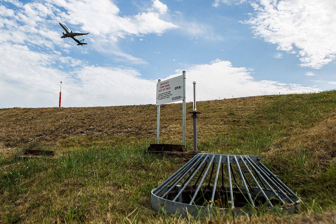 After decades of work, Paine Field is Salmon-Safe