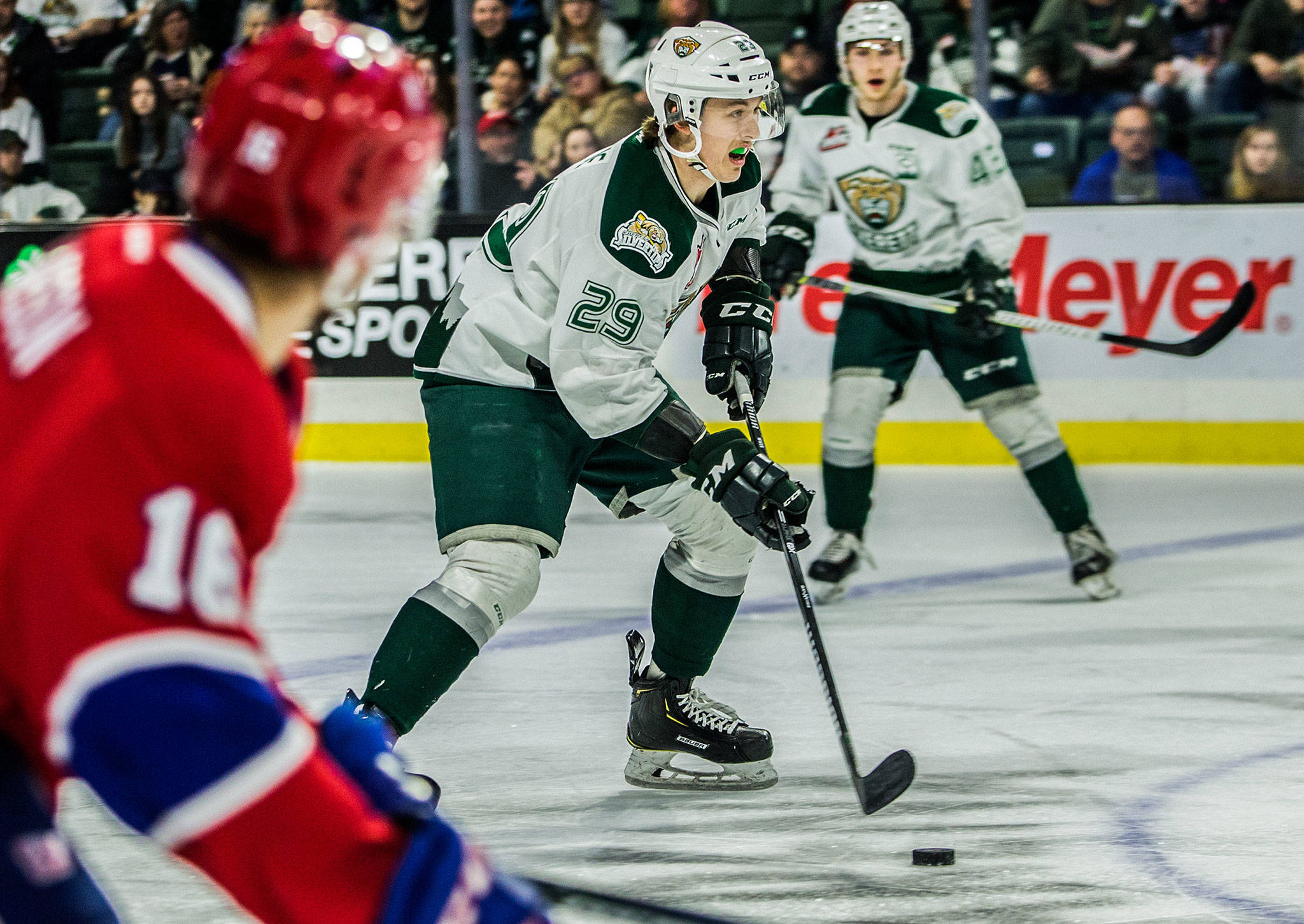 The Silvertips' Wyatte Wylie (29) skates with the puck during a game against the Chiefs on April 7, 2019 in Everett. (Olivia Vanni / The Herald)