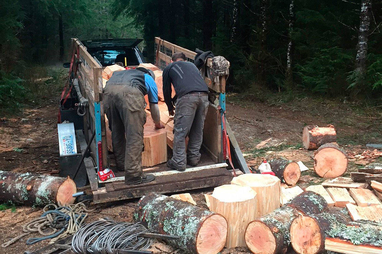 People load timber rounds that were illegally felled off the Mountain Loop Highway on state land east of Granite Falls. The firewood was delivered to area food banks. (Washington State Department of Natural Resources)