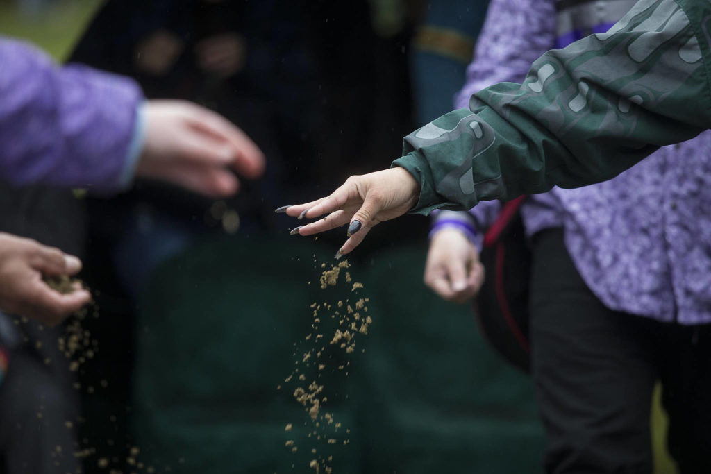 Family and friends sprinkle dirt over the casket of Stan Jones Sr. on the Tulalip Indian Reservation. Jones, 93, the Tulalip Tribes longest serving board member and chairman died Nov. 5. (Andy Bronson / The Herald)