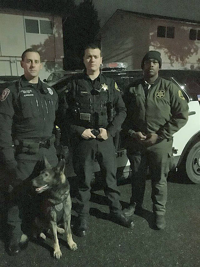 An Everett Police Department dog, Barron, helped catch a mugging suspect Monday morning in Lynnwood. (Snohomish County Sheriff's Office)