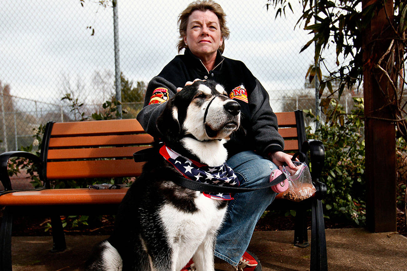 In 2012, Everett's Debbie Schmitz visited a local park with LuLu, a Central Asian shepard that her daughter, an Army officer, sent home from Afghanistan. Since then, an Arlington couple who read about the dog has reconnected with a nephew, who is married to Schmitz's daughter. (Dan Bates / The Herald 2012)