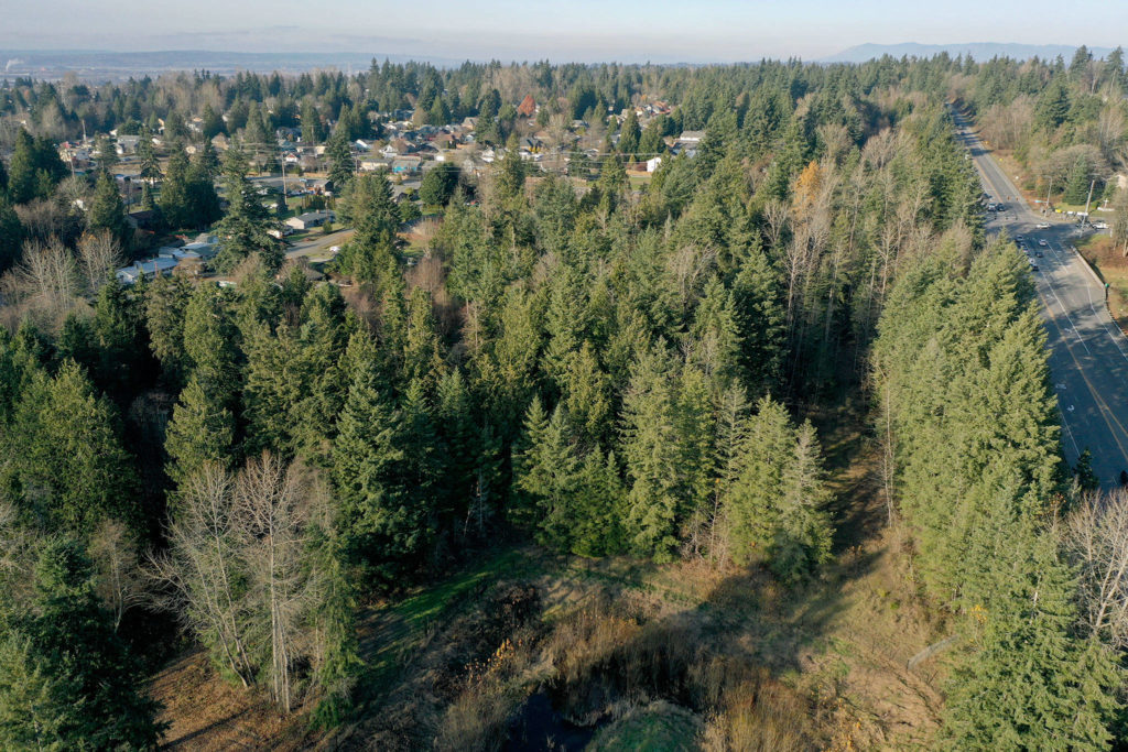 A portion of the site of the proposed Lake Stevens Costco at the intersection of Highway 9 (right) and South Lake Stevens Road (below, out of view). (Chuck Taylor / Herald file)