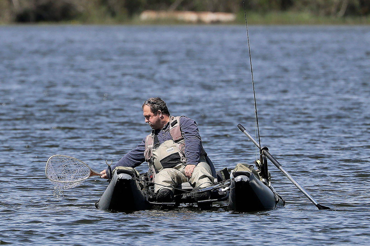 An angler dips his net into Blackmans Lake while fishing on the first day of a partial reopening of outdoor recreation activities Tuesday. in Snohomish. Hunting, fishing and golf are allowed under Phase 1 of the state's plan for reopening. (Elaine Thompson / Associated Press)
