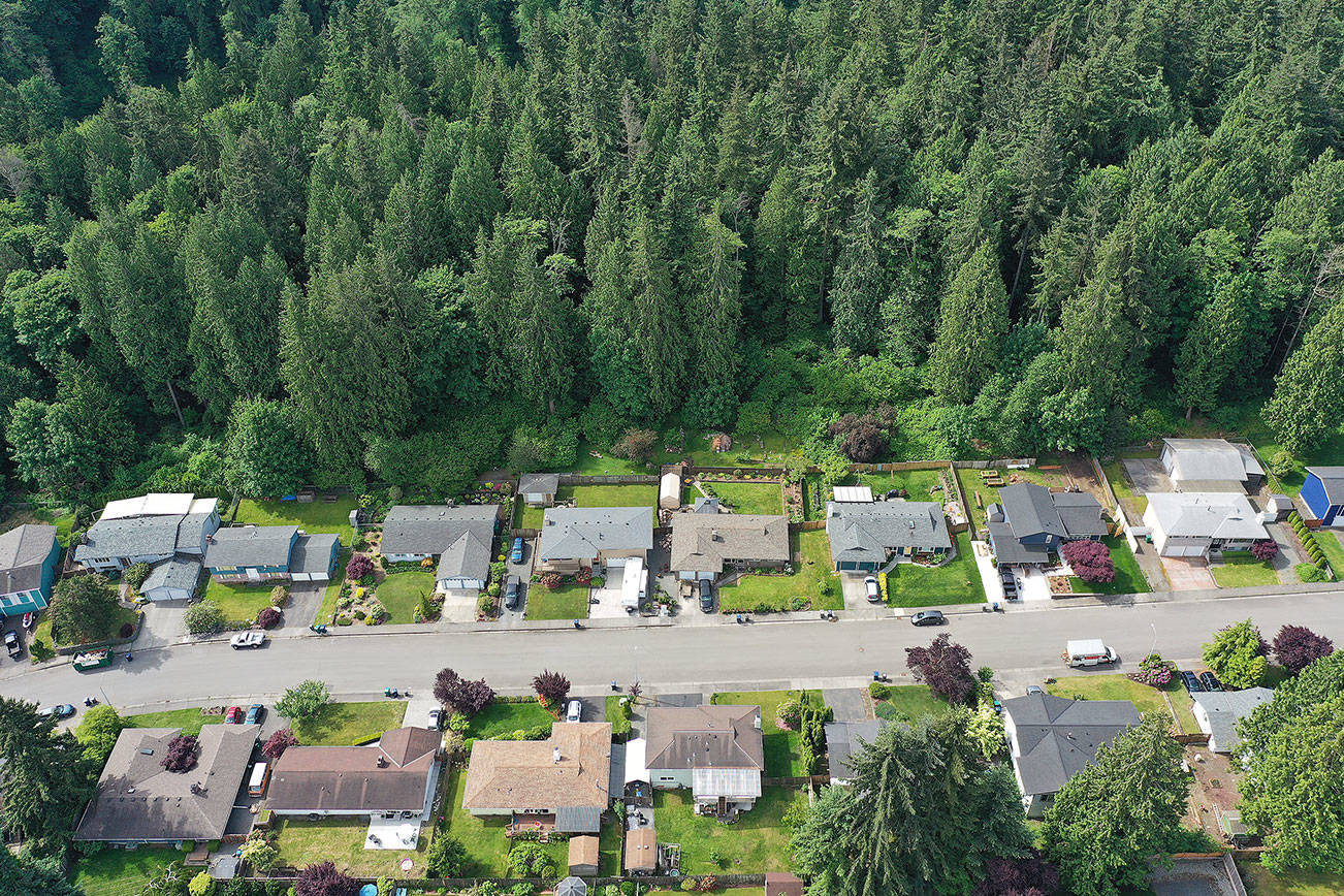 Everett yanks Wood Creek acreage from surplus property list