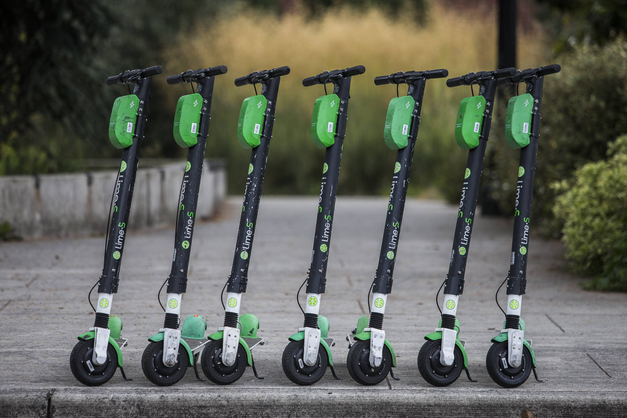 Fully charged Lime scooters along Bothell Way are ready to roll Wednesday in Bothell. (Olivia Vanni / The Herald)