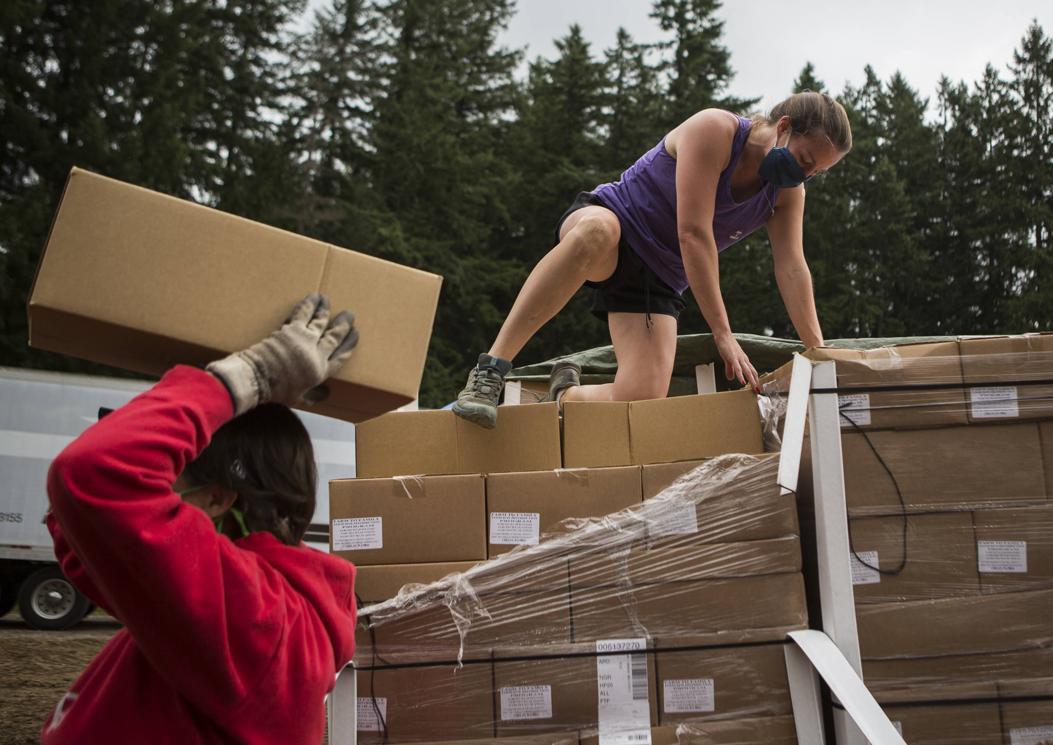 Alysha Herich (right) hands boxes of food to Vickie Cariello (left) to load into cars at Farmer Frog on July 24 in Woodinville. (Olivia Vanni / The Herald)