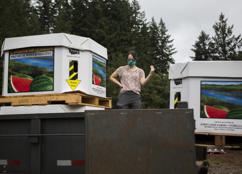 Emma Silber helps direct loading of watermelons July 24 in Woodinville. (Olivia Vanni / The Herald)