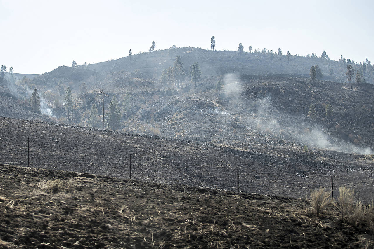 The ground smolders from the Cold Springs fire in Okanogan County on Sept. 10 near Omak. (Amanda Snyder/The Seattle Times via AP, fire)