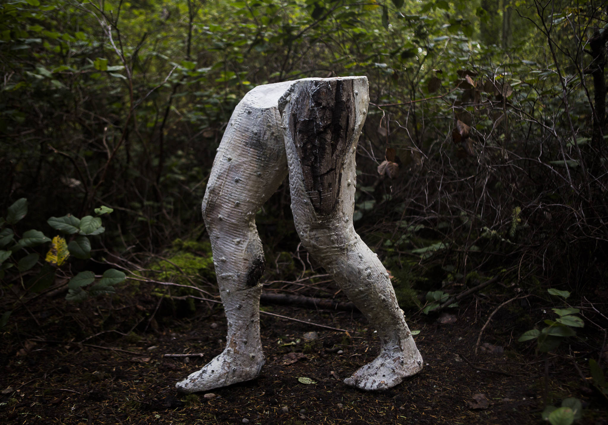 """David D'Ostilio's """"The Foundation of Animalia and Fungi,"""" a sculpture that incorporates live animalia and fungi, is featured in the new Price Sculpture Forest in Coupeville. (Olivia Vanni / The Herald)"""