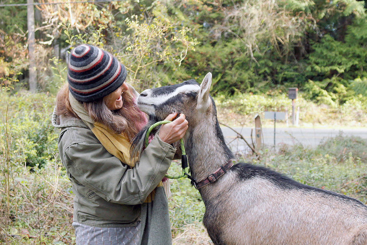 Sabine Wilms and Lady Yang Xiaomei, one of two goats she nurtured back to health. (Kira Erickson / Whidbey News-Times)