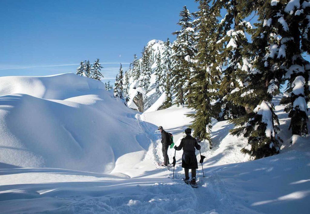 The Skyline Lake Trail near Stevens Pass is a great place for a winter-wonderland snowshoe hike. (Olivia Vanni / Herald file)