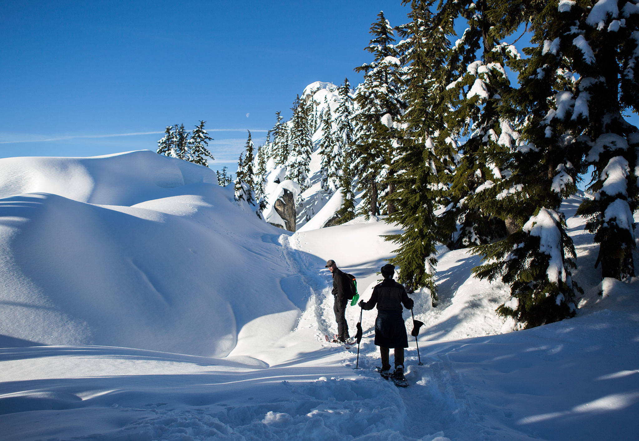 Sign up for a snowshoe tour with REI through the Mount Baker Lowlands — a mountainous winter wonderland that averages over 600 inches of snow annually. (Olivia Vanni / Herald file)