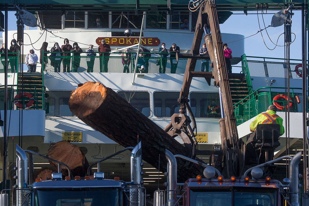 Ferry passengers watch as logs are moved after a semitruck hauling large logs spilled its cargo on the ramp of the Edmonds ferry terminal, stranding the ferry Spokane at the dock, on Monday, Dec. 28, 2020 in Edmonds, Washington. Approximately 80 cars and passengers waited for hours for the logs to be cleared. (Andy Bronson / The Herald)