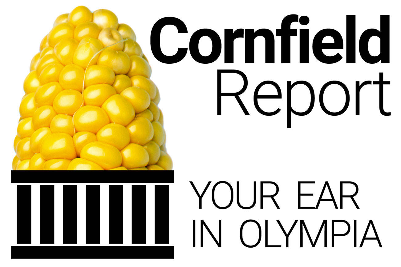 NO CAPTION NECESSARY: Logo for the Cornfield Report by Jerry Cornfield. 20200112
