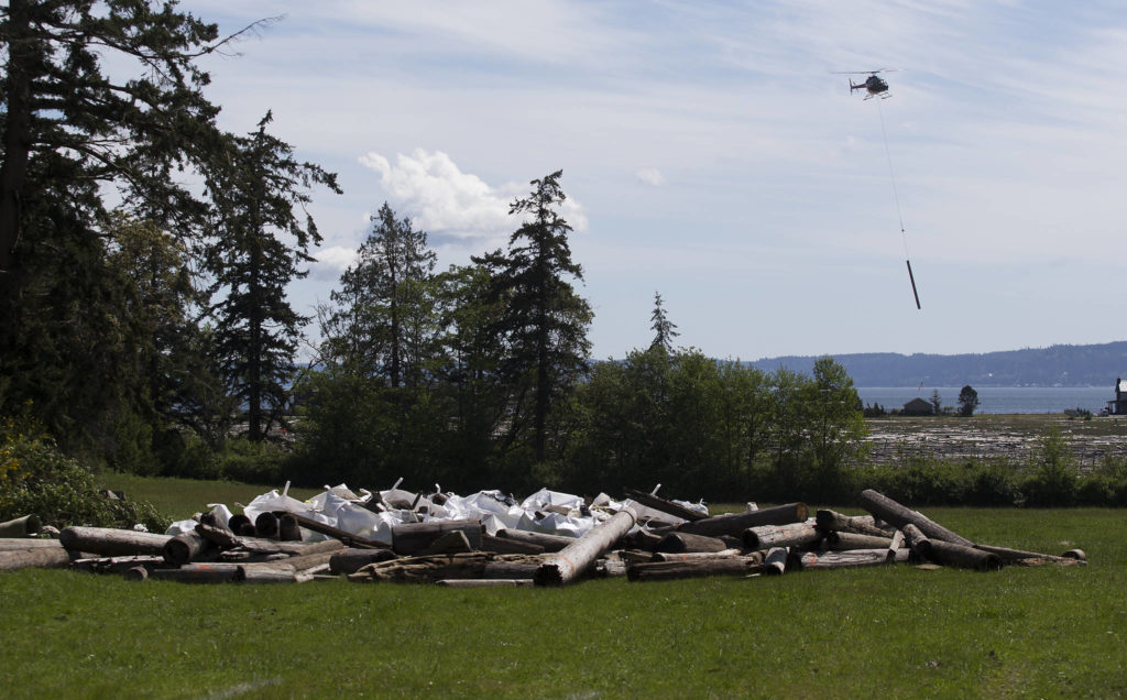 A helicopter delivers creosote-soaked logs to a staging site along Elger Bay on Camano Island. Department of Natural Resources crews removed tons of toxic logs and pilings left there by the tides. (Andy Bronson / The Herald)