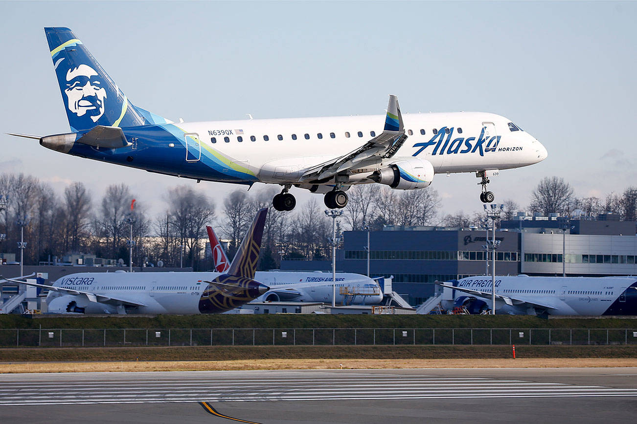 An Alaska Airline plane lands at Paine Field Saturday on January 23, 2021. (Kevin Clark/The Herald)