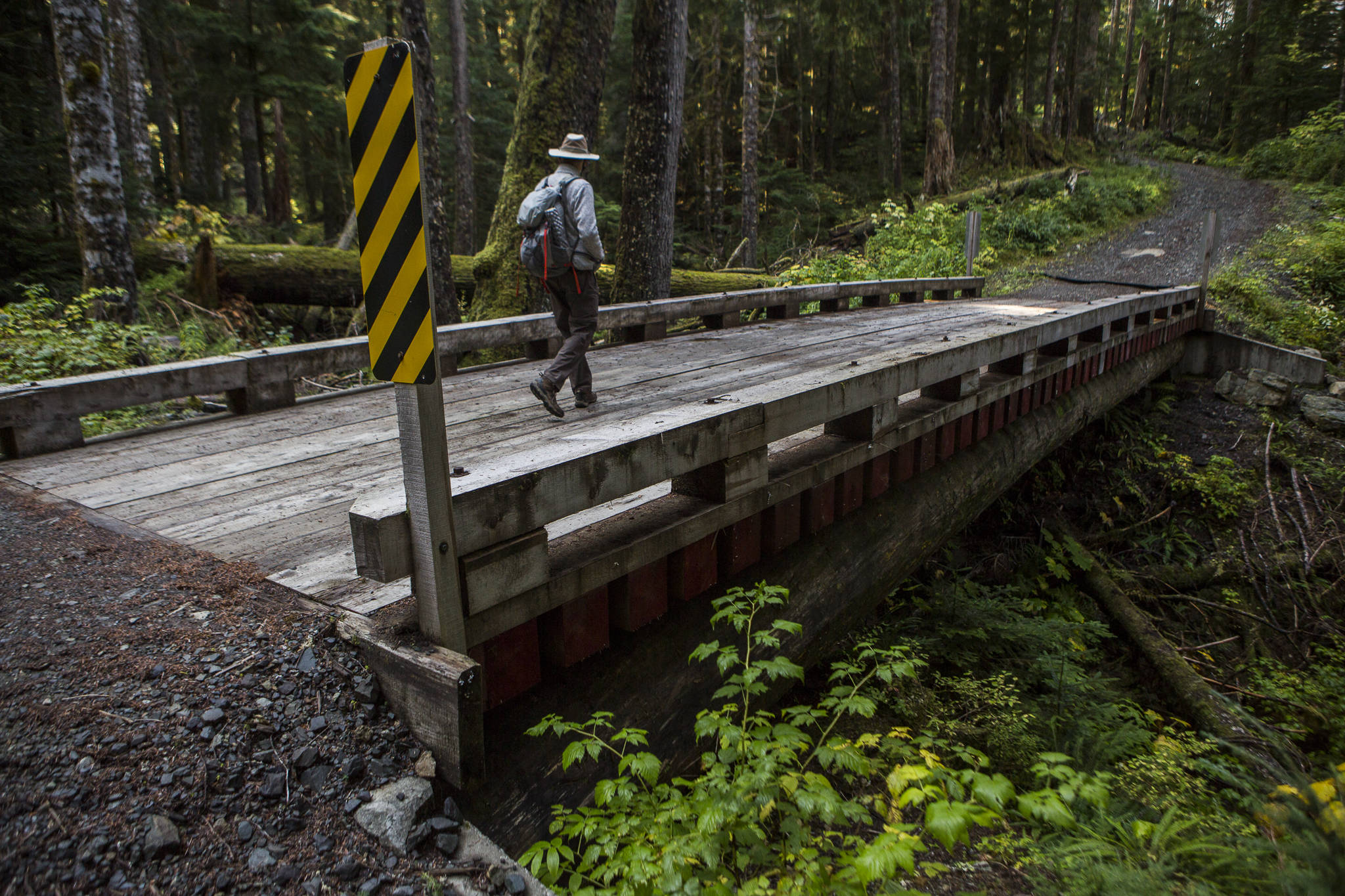 This October 2020 photo shows a log bridge that crosses a creek along an access road connected to the Monte Cristo trail. (Olivia Vanni / Herald file)