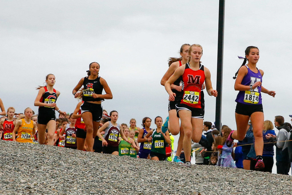 The girls gold division runs the first leg on Saturday afternoon during the annual Hole in the Wall cross country meet at Lakewood High School in Arlington on October 9, 2021. (Kevin Clark / The Herald)